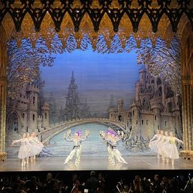 Zajištění TOUR ve Francii s petrohradským národním baletem (zvuk, světla, rigging, opony, taneční povrch)
